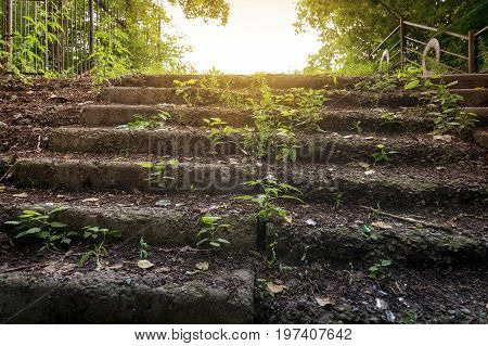 Old Abandoned Stone Staircase In Park
