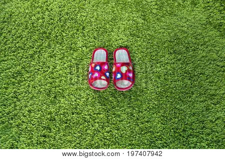 Pair Of Women's Slippers.