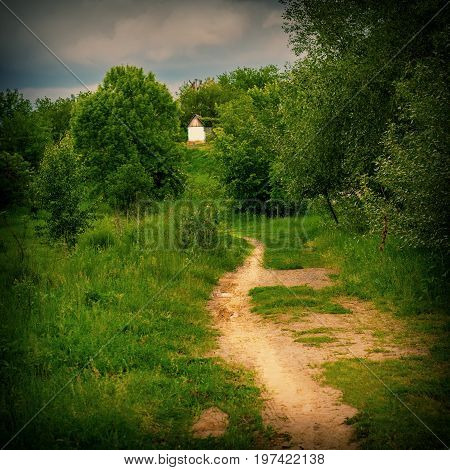 Dirt trail to the old house in the forest