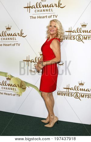 LOS ANGELES - JUL 27:  Barbara Niven at the Hallmark TCA Summer 2017 Party at the Private Residence on July 27, 2017 in Beverly Hills, CA