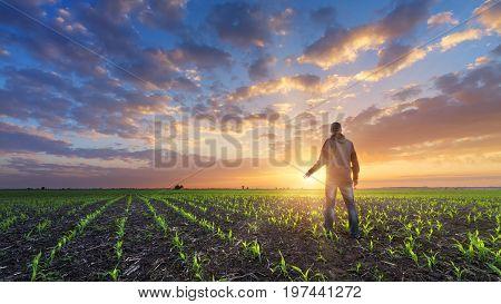 man in field at sunset / bright spring photo Ukraine