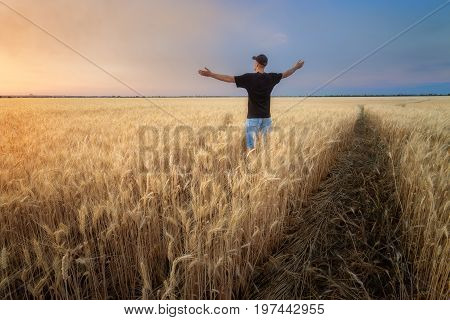 man in a wheat field / sunset field evening photo Ukraine