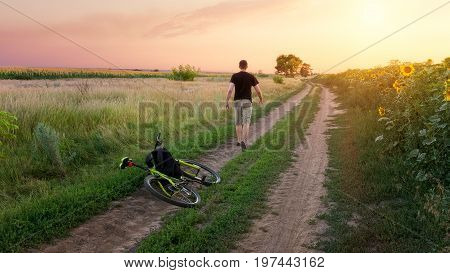 trail during sunset / country road evening landscape
