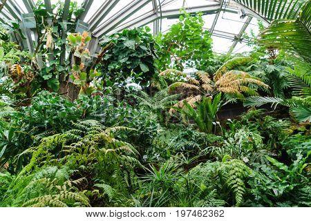 Orangery of the National Botanic Garden of Berlin