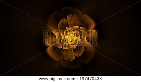 Abstract fractal flower pattern background spiral spherical wave elements.