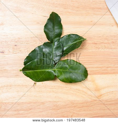 Kaffir ime leaf on wooden broad / Cooking green curry concept