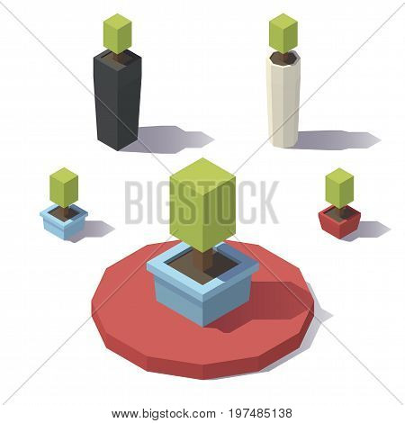 Vector isometric low poly Houseplant. Vector low poly illustration.