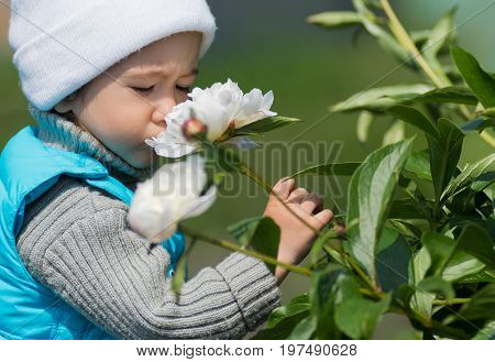 Little girl enjoys flowers in nature .