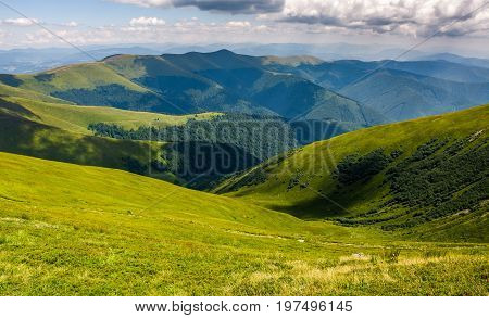 Grassy Hillside On Mountain In Summer