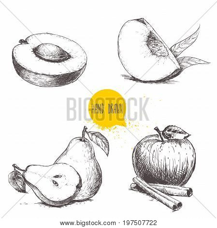 Hand drawn sketch style fruits set. Apricot peach quarter with leafs whole pear and half apple with cinnamon sticks. Vector illustration collection on white background.