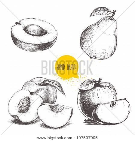 Hand drawn sketch style fruits set. Apricot half with stone peaches whole pear apples. Bio food vector illustration collection on white background.