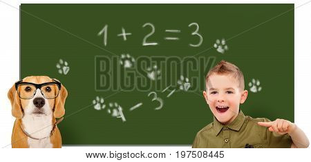 Laughing boy, pointing finger on a beagle dog wearing glasses on the background of the school board
