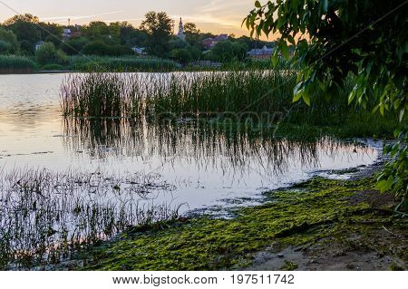 Summer Landscape On The Banks Of The Green River At Sunset, Russia, Rostov Region, Don
