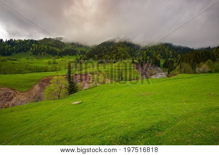 Low Gray Clouds Float Above The Green Alpine Meadow