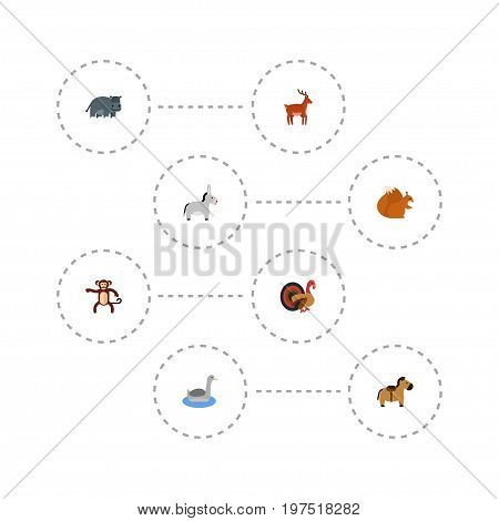 Flat Icons Hippopotamus, Pony, Chipmunk And Other Vector Elements
