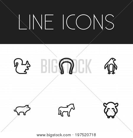 Set Of 6 Editable Animal Outline Icons. Includes Symbols Such As Horseshoe, Pig, Diver And More