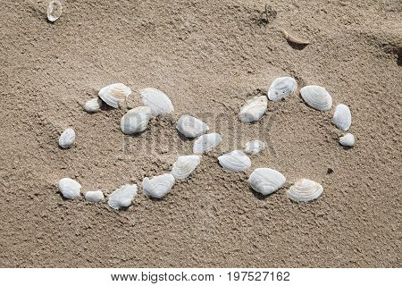 Symbol Infinity Lined With Seashells