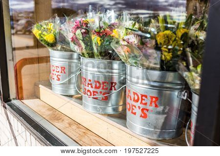 Fairfax USA - January 18 2017: Buckets of flowers with Trader Joe's signs viewed from outside of store