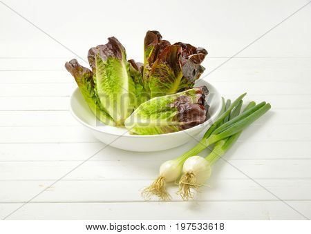 bunch of spring onion and bowl of fresh lettuce on white wooden background