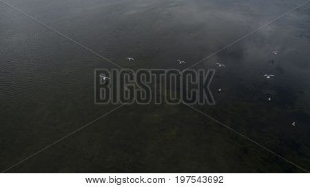 Photo From The Sky