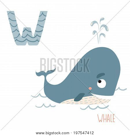 Vector kids illustration of cute animal alphabet. Letter W for the Whale and Water. Cartoon cute whale is swimming in ocean isolated on white background for child illustration, baby shower, birthday card, invitation, T-shirt.