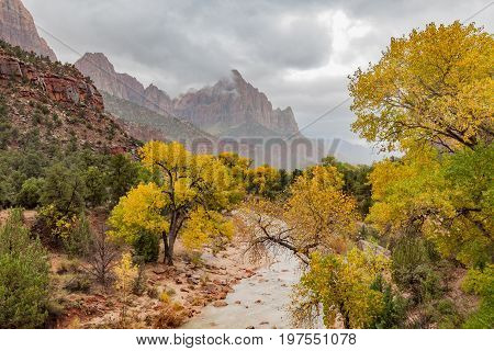 the virgin river and the watchman in Zion National Park Utah in autumn