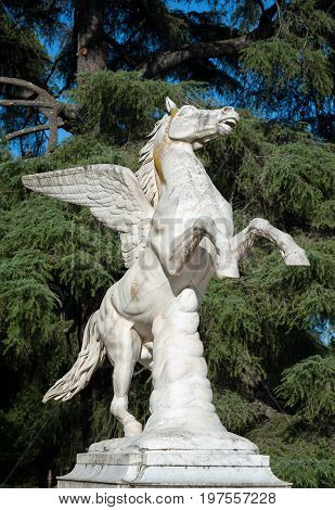 Florence ITALY - July 18 2017: Pegasus statue by Aristodemo Costoli (1865). It is located in the Boboli Garden.