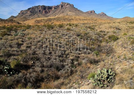 Chisos Mountains Landscape in Big Bend National Park, Texas