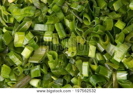 Background of chopped green onions. Chopped green onions