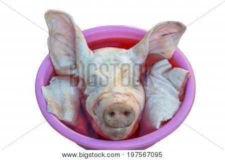 Raw Chopped Off Pig Head