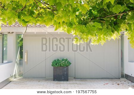 Modern House Driveway Entrance Overhanging Leaves Trees Beautiful White Home
