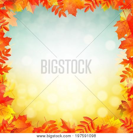 Autumn Red Leaves Border