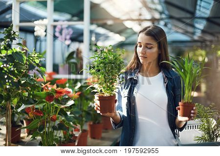 Young female chosing between plants to use on her landscape design