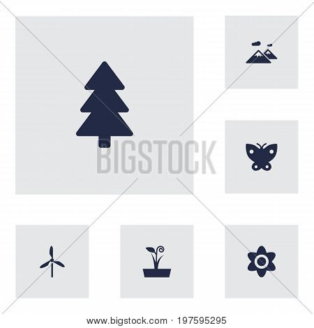 Collection Of Pinnacle, Flowerpot, Bloom And Other Elements.  Set Of 6 Ecology Icons Set.
