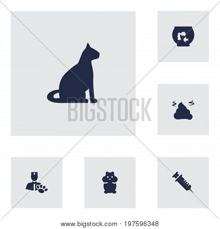 Collection Of Injection, Rat, Fishbowl And Other Elements.  Set Of 6 Mammal Icons Set.