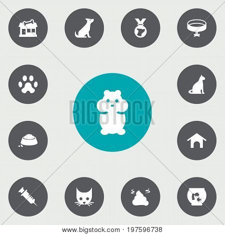 Collection Of Footprint , Neckband , Dog Elements.  Set Of 13 Animals Icons Set.