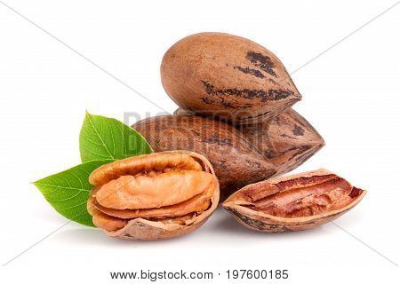 heap of pecans with leaves isolated on white background.