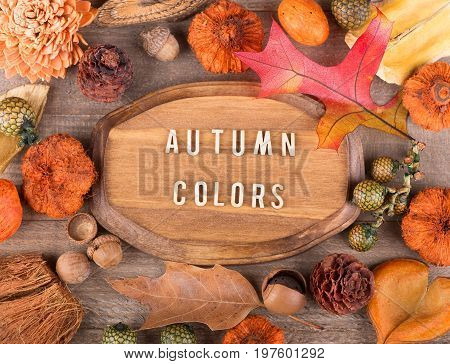 Wood plaque with autumn colors text surrounded with colorful fall objects