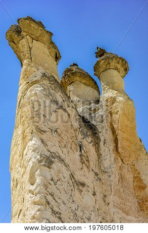 Famous geological formations known as Fairy Chimneys and used as housing in Goreme Cappadocia Turkey