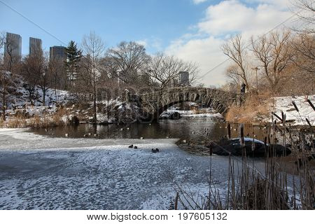 NEW YORK - FEBRUARY 18: Winter day scenery with stone bridge and skyline view in Central Park in New York City , USA on February 18, 2015