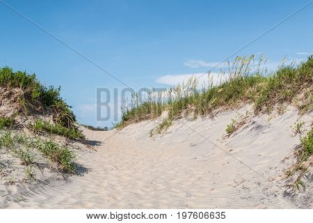 Pathway through sand dunes covered in beach grass at Coquina Beach, Cape Hatteras National Seashore.
