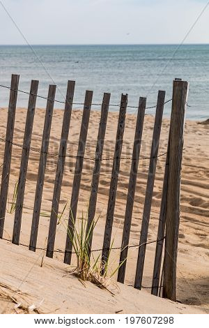 A sand fence on the beach in Nags Head, North Carolina.