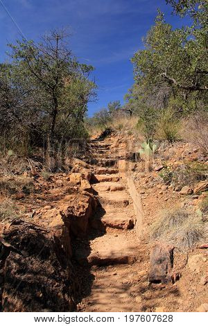 The  Scenic Emory Peak Trail in the Chisos Mountains of Big Bend National Park in the State of Texas