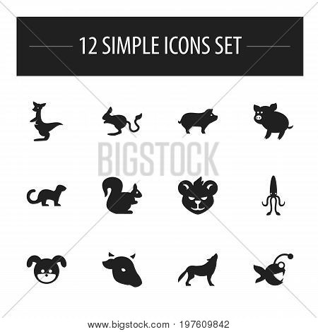 Set Of 12 Editable Animal Icons. Includes Symbols Such As Kangaroo, Polecat, Puppy And More