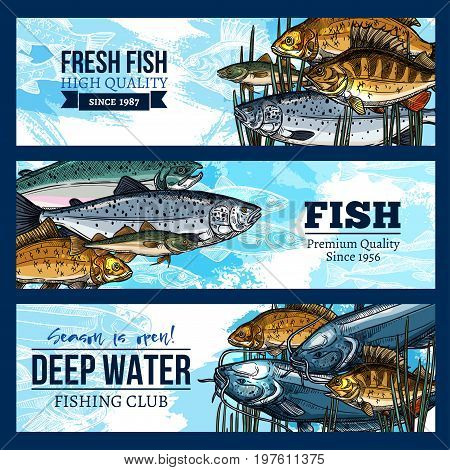 Fishing club banner set of fresh fish catch. Vector design of fisherman big seafood and fish food herring, mackerel or sprat and tuna, salmon or flounder and sheatfish or trout in water