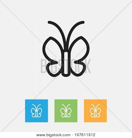 Vector Illustration Of Zoology Symbol On Moth Outline