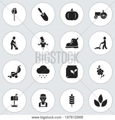 Set Of 16 Editable Planting Icons. Includes Symbols Such As Daffodils, Bugaboo, Grass Cutting Machine And More