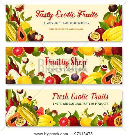 Exotic fruits banners set durian, mango or papaya and feijoa, fresh tropical mangosteen, carambola star fruit or rambutan and orange pomelo, dragonfruit pithaya, maracuya passion fruit or figs