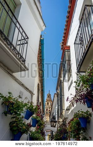 Bell Tower Viewed From The Streets Of Cordoba, Spain, Europe,calleja De Las Flores
