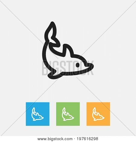 Vector Illustration Of Zoology Symbol On Playful Fish Outline